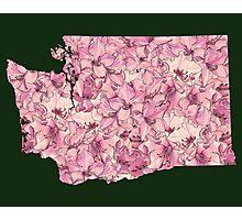 Washington Flowers Photographic Print