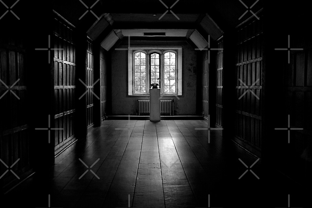 The Panelled Hall by Country  Pursuits