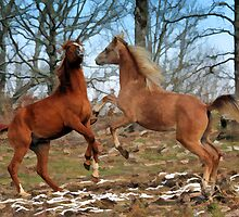 Horse Play by Sharon Morris