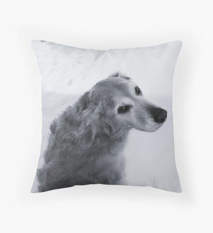 CJ Throw Pillow