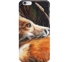 For Fox Sake iPhone Case/Skin
