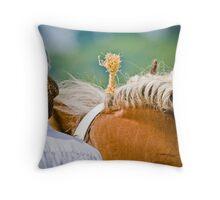 Hairnet & Plait Throw Pillow