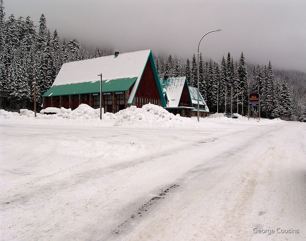 Rogers Pass (1) by George Cousins
