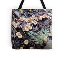 Bird's Nest Cup Fungus Tote Bag
