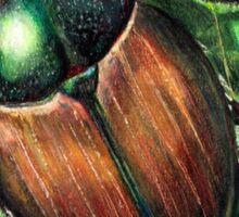 Japanese Beetle on Leaf Sticker