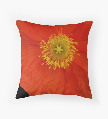 Hello Poppy  Throw Pillow