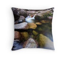 Translucent Reflections Throw Pillow