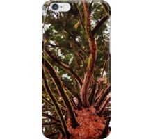 Red Wood Tree iPhone Case/Skin