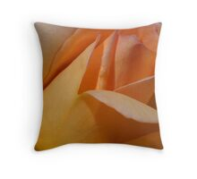 Soft Apricot Throw Pillow