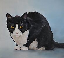 Tuxedo Kitty by Charlotte Yealey