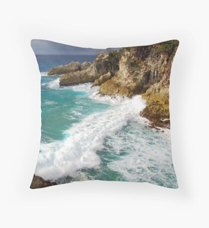 Here be Turtles Throw Pillow