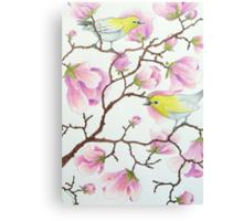 White-eyes on magnolia tree Canvas Print
