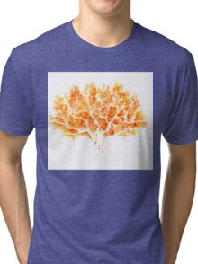 Autumn Tree Tri-blend T-Shirt