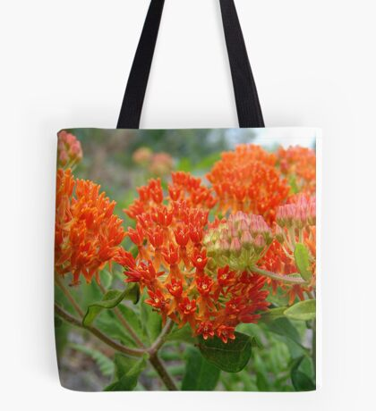 Asclepsia (Butterfly Weed) Tote Bag