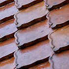 Roof tiles by dbarden