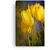 Katie's Tulips Canvas Print