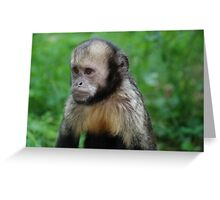 Grumpy Monkey Greeting Card