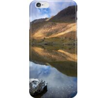 Double Delight iPhone Case/Skin