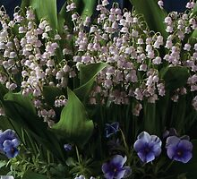 Lily of the Valley  by DFANewYork