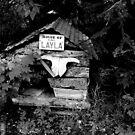 House of Layla by Jenny Miller