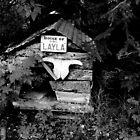 House of Layla by Jenny Ryan
