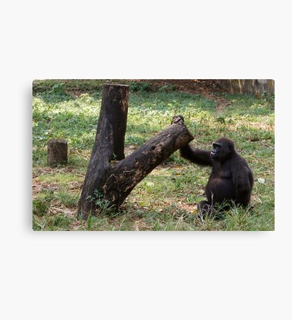 Gorilla Tree Canvas Print