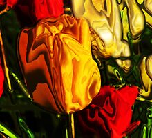 Yellow and Red Tulips by Christina Stanley