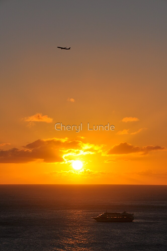 Flying Home by Cheryl  Lunde