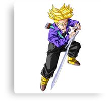 Trunks with Sword Canvas Print