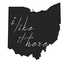 I Like it Here Ohio by surgedesigns