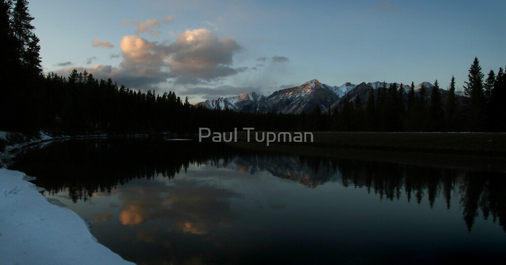 Into The Wild by Paul Tupman