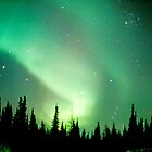 Aurora Borealis, Churchill, Manitoba by Virginia Maguire