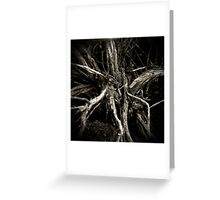 Sage Brush Greeting Card