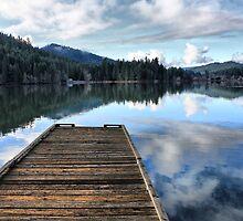 Long Walk off a Short Pier by Stephen  Van Tuyl