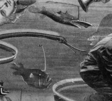 Deep Sea Aquarium Keeper. Sticker