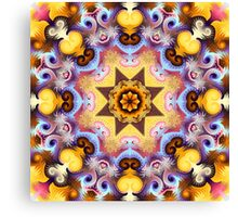 Decorative patterns and a star in a kaleidoscope Canvas Print