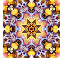 Decorative patterns and a star in a kaleidoscope Photographic Print