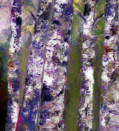 Birches At Dusk Sticker