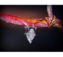 Diamond Ice Photographic Print