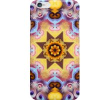 Decorative patterns and a star in a kaleidoscope iPhone Case/Skin