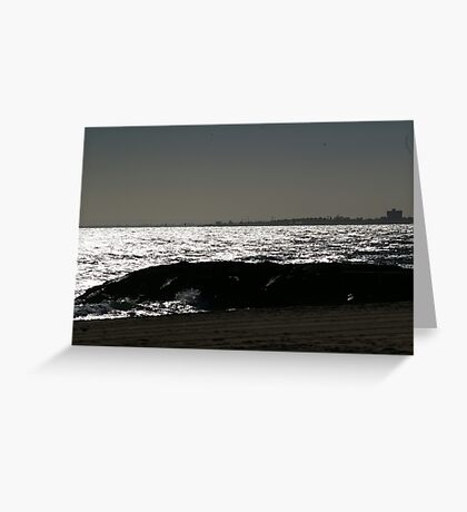 SILVER SEAS Greeting Card