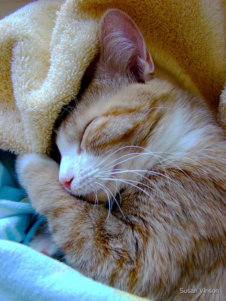 Sh-h-h-h-h Baby Sleeping by Susan Vinson