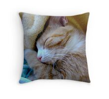 Sh-h-h-h-h Baby Sleeping Throw Pillow