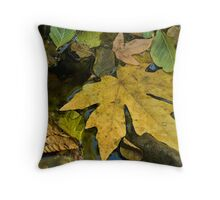 Fall leaves in stream Throw Pillow