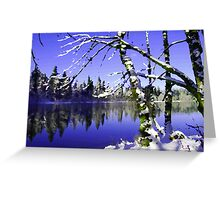 Painted Winter Reflections Greeting Card