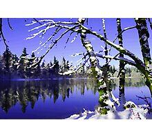 Painted Winter Reflections Photographic Print