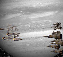Fleets by S McKoy