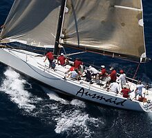"""""""Ausmaid"""" Solitary Islands Race by Jo  Young"""