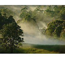 """Sunshine & Mist"" Photographic Print"