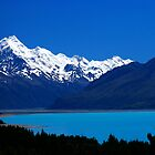 Aoraki National Park. by Andy Newman